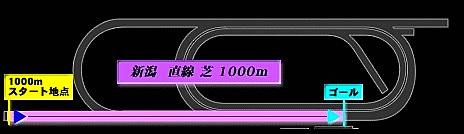 Name_2021-7-24.jpg