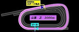 kyo_t3000_R.jpg